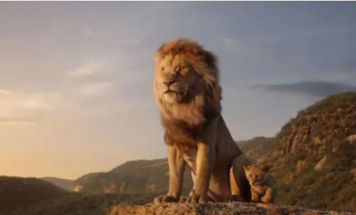 Kviz o Kralju lavova