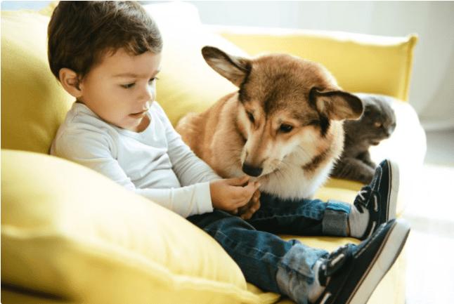 prednosti odrastanja s kućnim ljubimcima