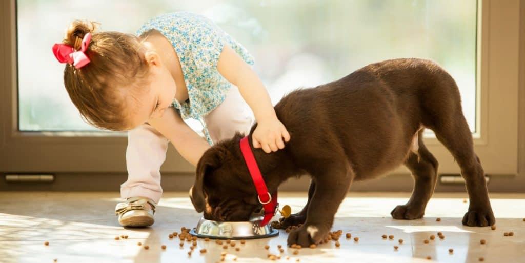 Ljubimci i djeca su savršena kombinacija